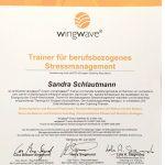 Sandra-Schlautmann-Trainer-Stressmanagement-BSI.jpg